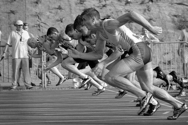 běžci na dráze