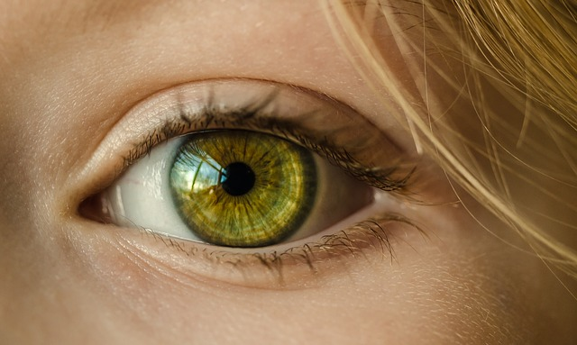 Zelené oko se dívá se zaujetím.jpg